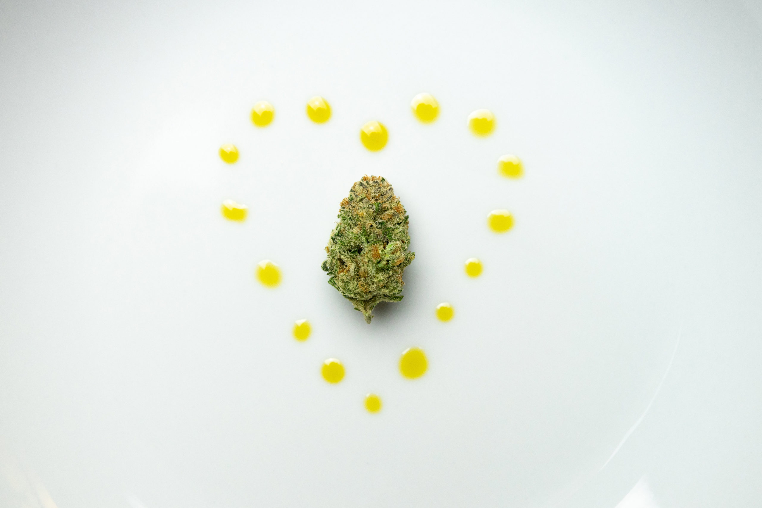 The Current State of CBD Product Legislation in the UK