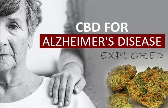 CBD Oil for Alzheimer's Disease: Is it a Practical Treatment?