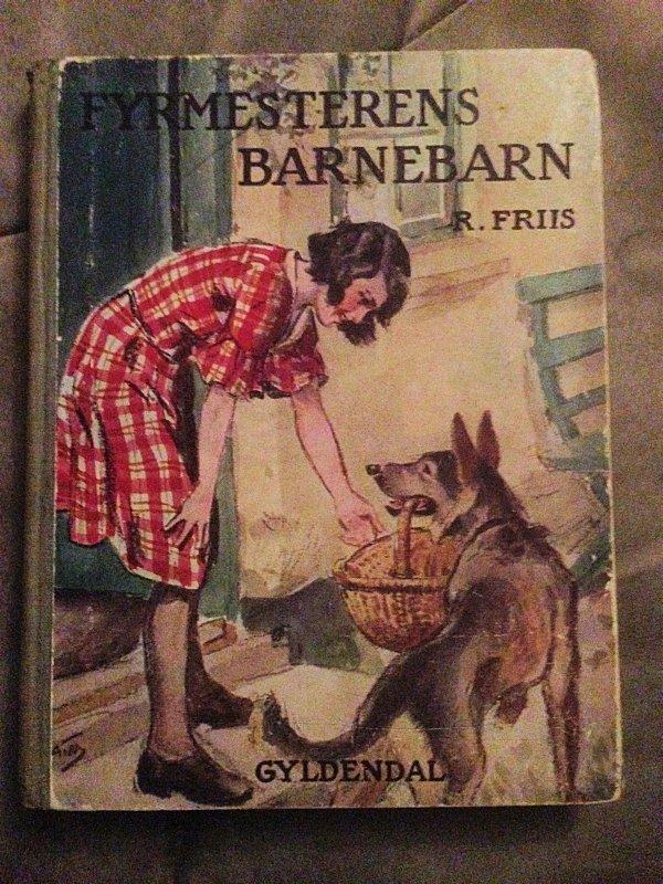 """Hende Jensen blog - boganmeldelse af """"Fyrmesterens barnebarn"""" af R. Friis"""