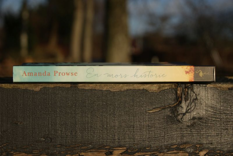 """Give-away #3 - """"En mors historie"""" af Amanda Prowse - sponsoreret af Forlaget Flamingo - Bogfinken bogblog"""