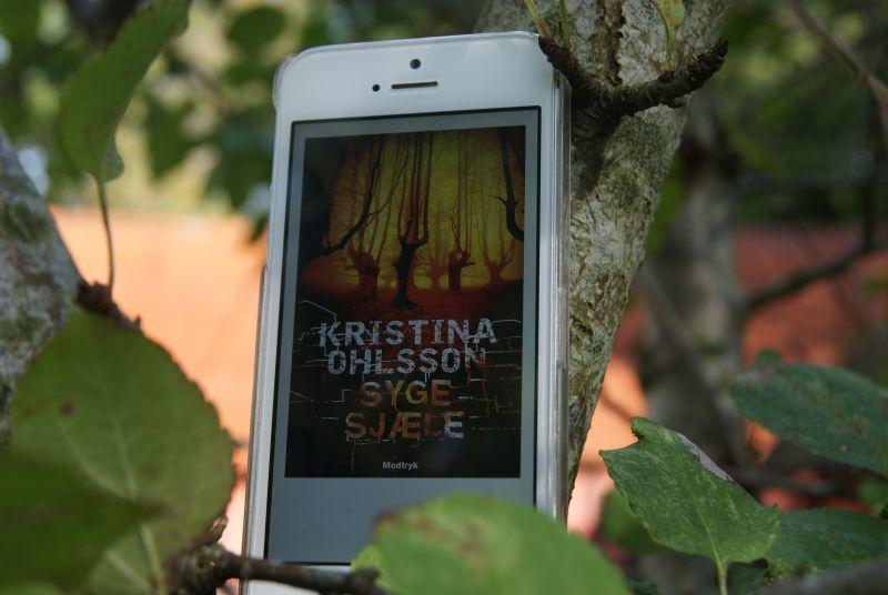 """""""Syge sjæle"""" af Kristina Ohlsson - boganmeldelse - Bogfinken bogblog"""