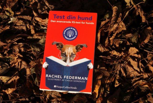 """""""Test din hund"""" af Rachel Federman - Bogfinkens bogblog"""
