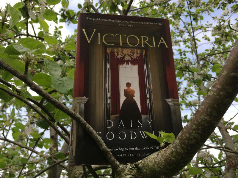 """""""Victoria"""" af Daisy Goodwin - boganmeldelse - Bogfinkens bogblog"""