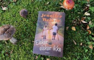 Elsker, elsker ikke af Jennifer Weiner - Bogfinkens bogblog