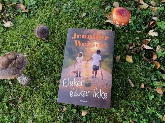 Elsker elsker ikke af Jennifer Weiner - Bogfinkens bogblog