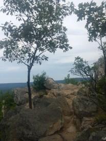 Pole Steeple Overlook