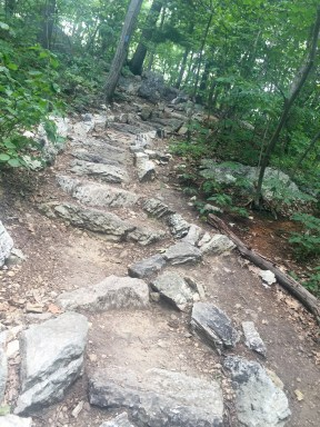 Rocky twisting trail to Pole Steeple