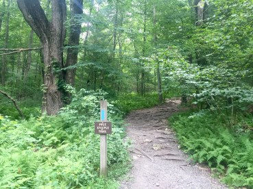 Taking the trail to Pole Steeple