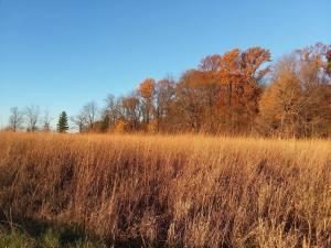 Intro to Certified Wildlife Habitat @ McCloud Nature Park