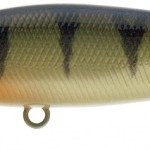 SQUAD MINNOW 65 SP PERCH P P 1