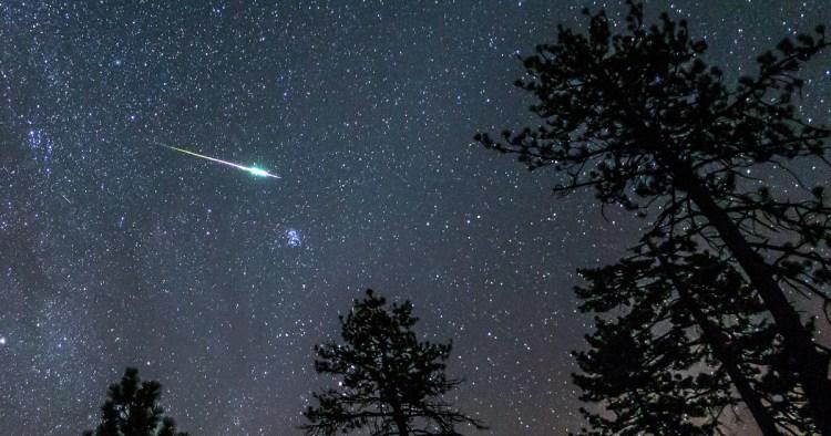 2016 Perseid Meteor Fireball Streaks Above Pine Trees