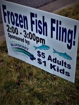 fish fling 1