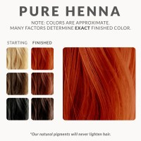 Pure Henna Hair Dye  Henna Color Lab  Henna Hair Dye