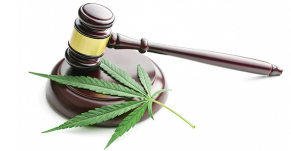 cannabis-wet-regelgeving