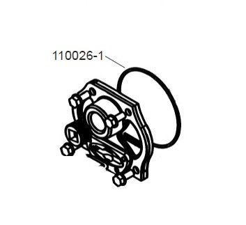 GPI 110026-1 Gear Coverplate O-Ring for M-120 TNF Pump