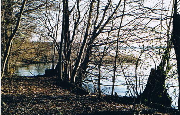 zeuthener-see-2003.jpg