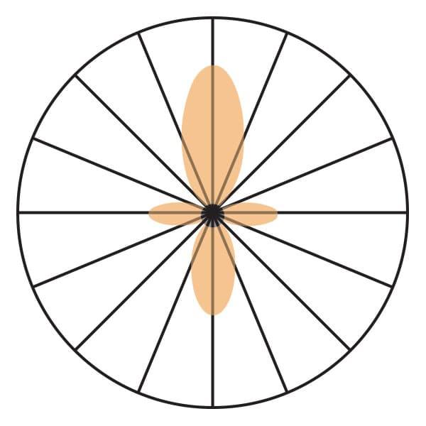Lobular Pickup Pattern for Shotgun Mic