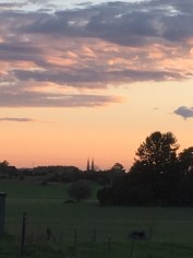 Uppsala Domkirke set fra Danmarl-Lunde