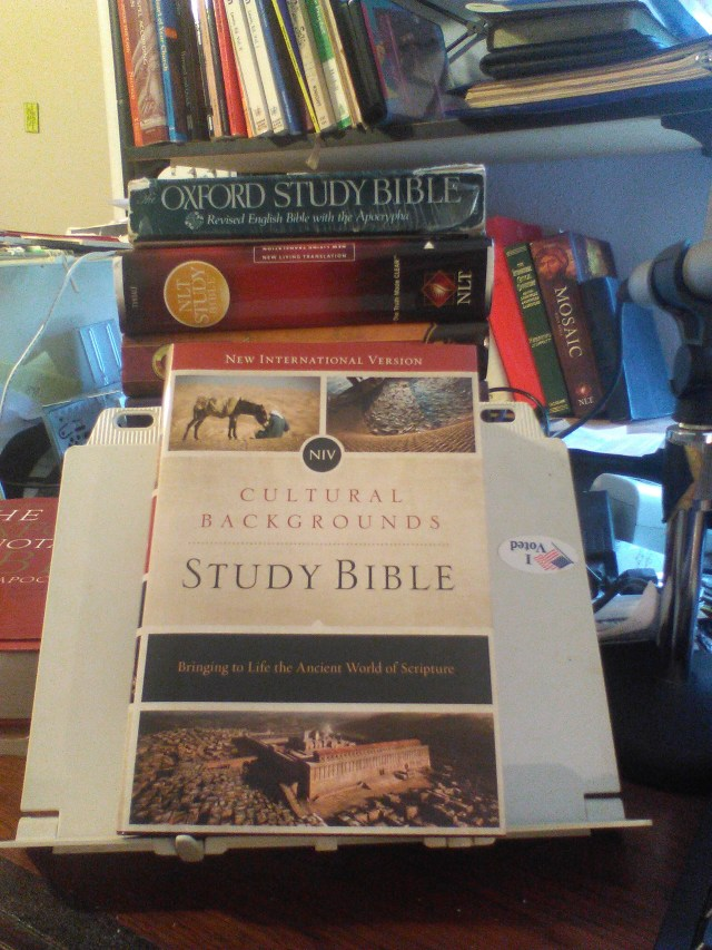 NIV Cultural Backgrounds Study Bible (Front)