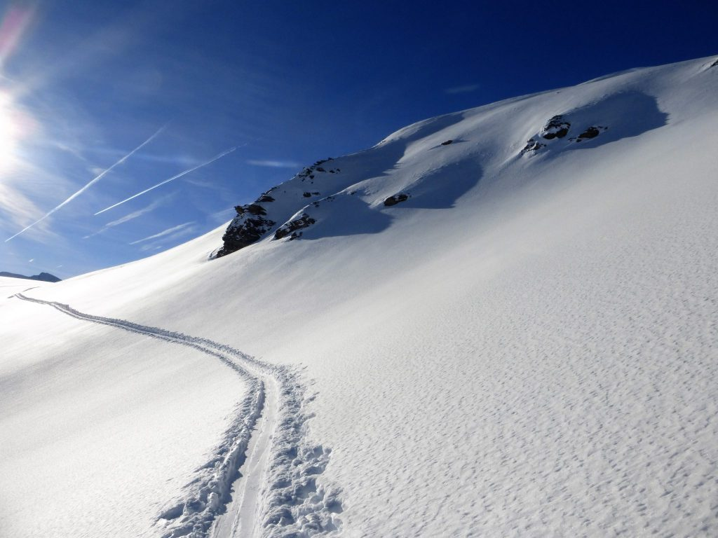 Ski Touring; Wayne Watson photo