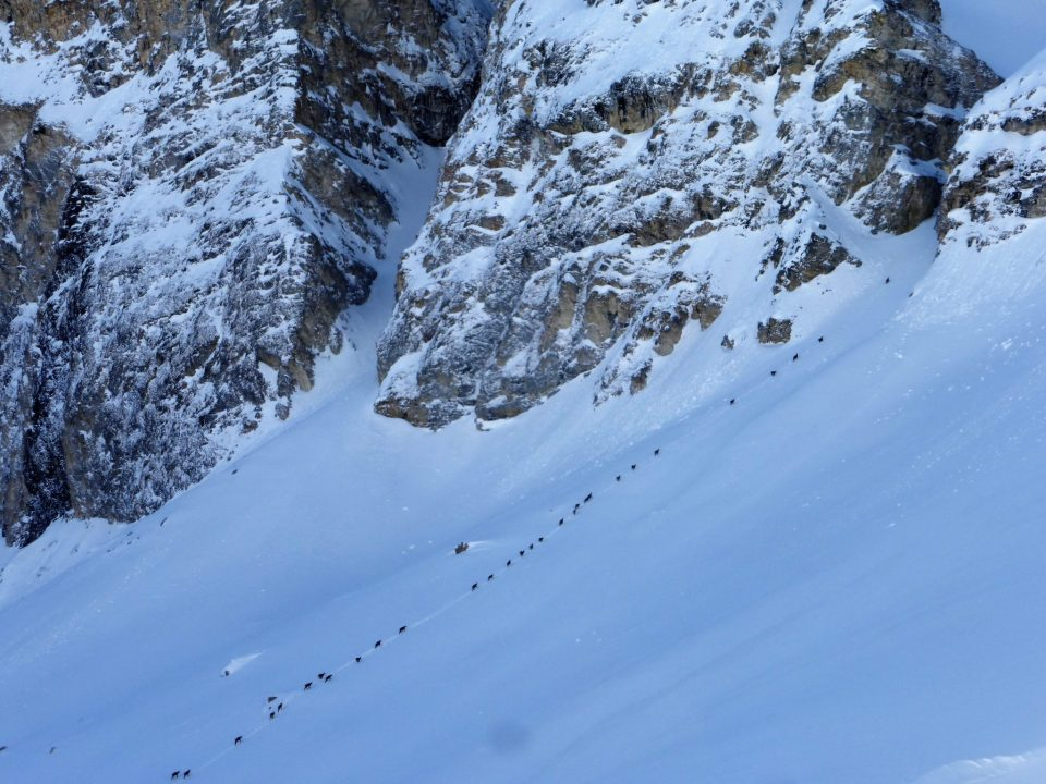 Off-Piste Snow Report 14 - 22 March 2019