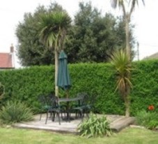 Rear Garden Patio