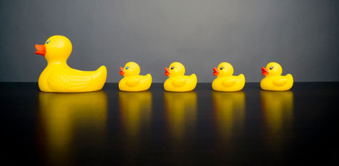 ducks-in-a-row1