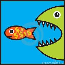 big-fish3