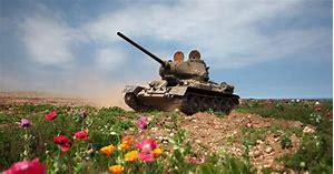 tank lawn.jpg