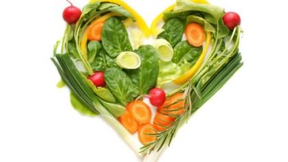 organik sebze yetiştirme