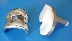 Total diz protezinin parçaları