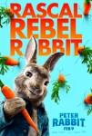 sinopsis peter rabbit