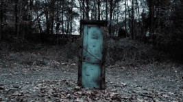 Sinopsis Door in the woods