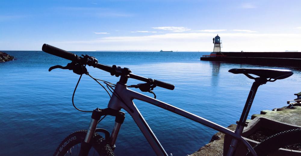 cykelrunda råå hamn