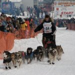 Hammering The Iditarod