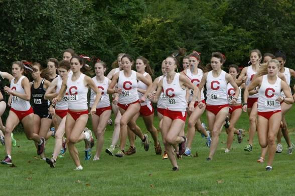 Cornell_team