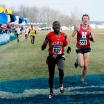 Recapping NCAA Cross Country