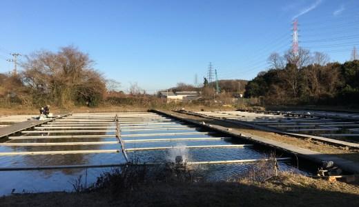 一転、ドMな釣りへ^^;阪奈園(2016.02.11)