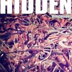 The Hidden Dimensions, by Alex Lanier
