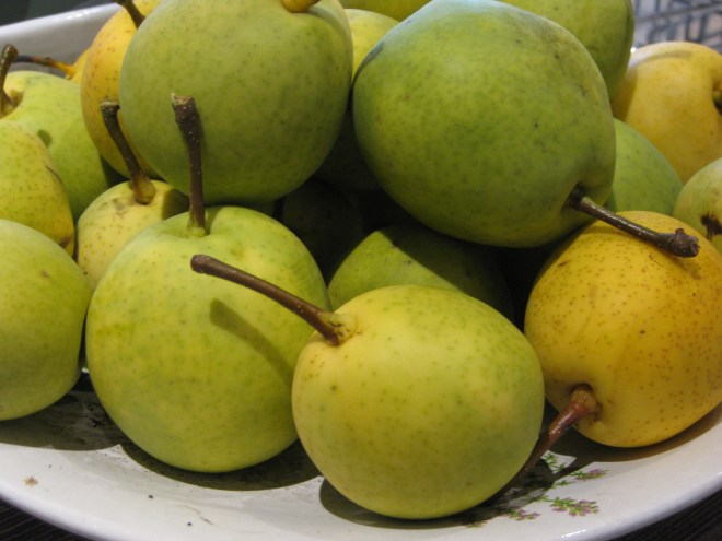 Apfelrunde Nashi-Birnen