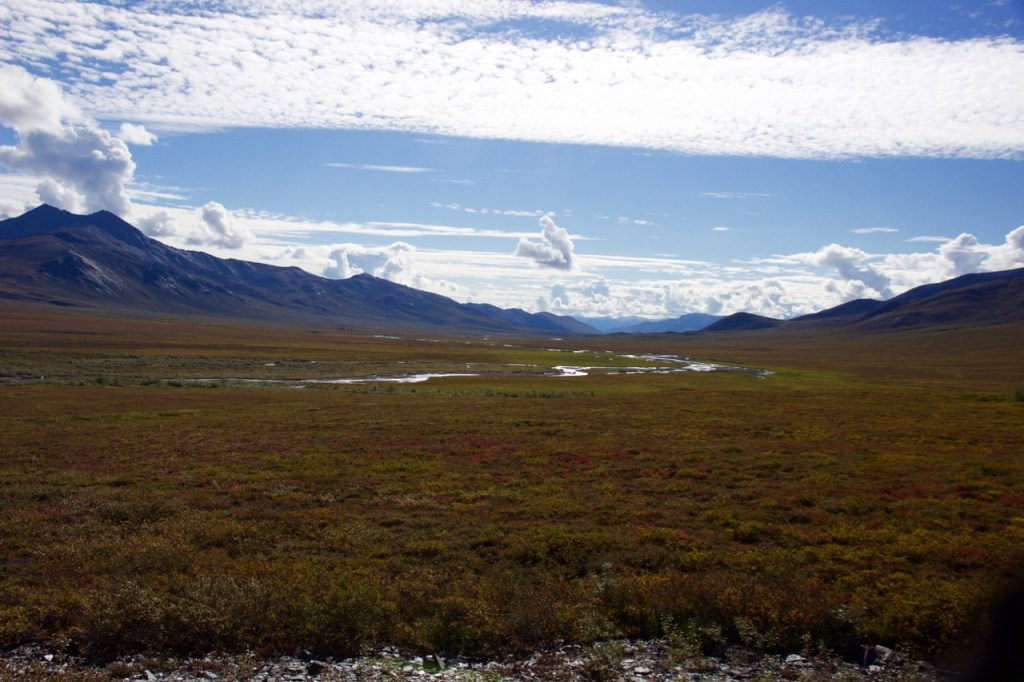 Beautiful autumn colours in the tundra beyond Atigun pass