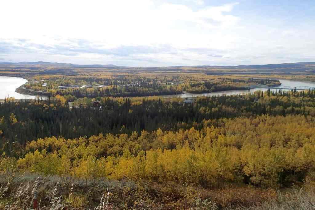 Alles kleurt geel in het noorden van Canada