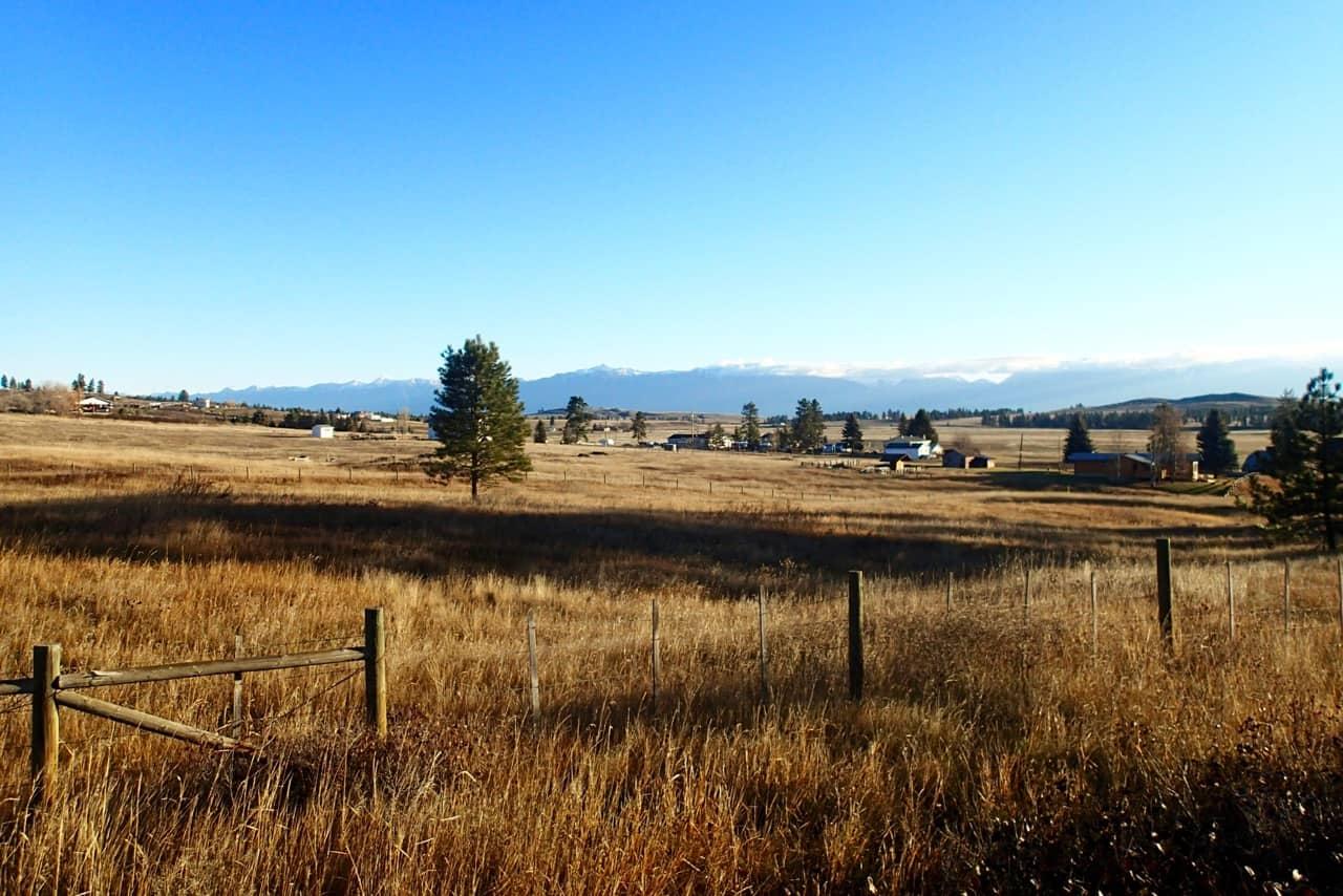 Totaal andere natuur nu de Rocky Mountains links van me liggen.