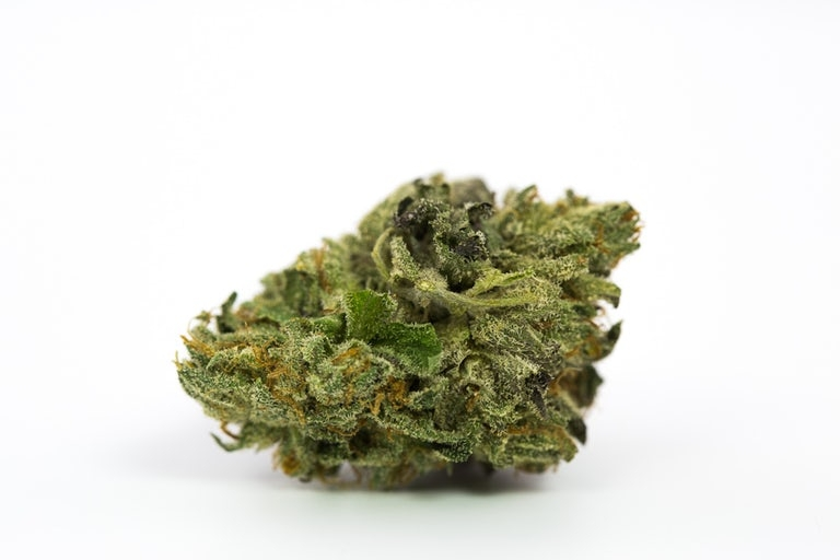 Rude-Boi-Marijuana-Strain
