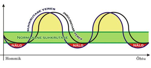 Süsivesikute muutumise mehhanism hommikusöögi puudumise korral