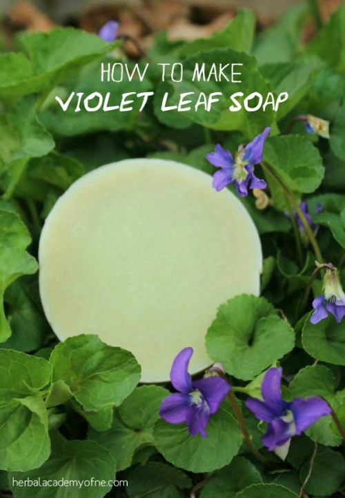 How to Make Violet Leaf Soap - Natural Soap Making Recipe