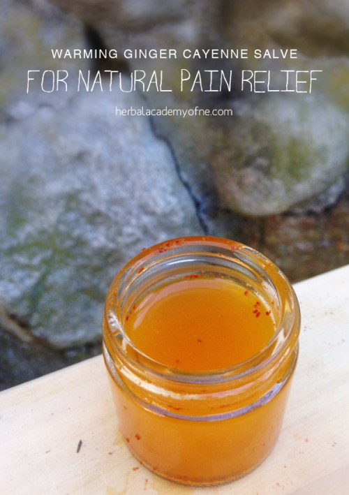 Warming Ginger Cayenne Salve for Natural Pain Relief