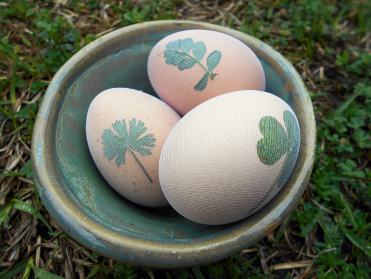 4 Easter Egg Decorating Techniques Herbal Academy Blog
