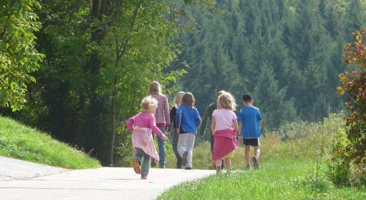 Tips A Trick For Families During Allergy Season