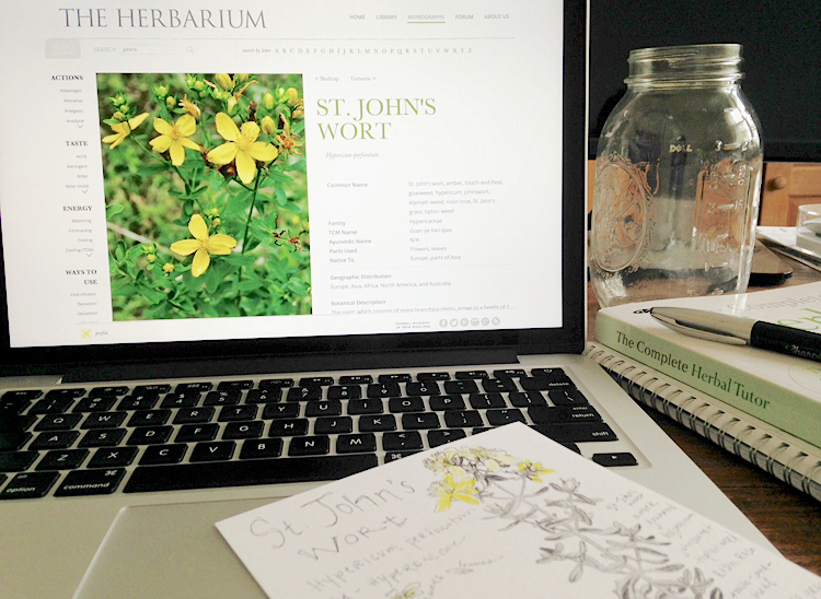 The Herbarium is a useful tool for building your Materia Medica